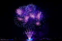 Colorful fireworks on the black sky Stock Photo