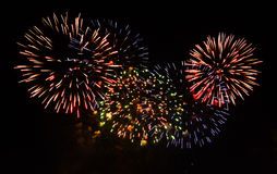 Colorful fireworks on the black sky Stock Photos