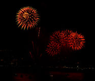 Colorful fireworks on the black sky. Background Royalty Free Stock Images