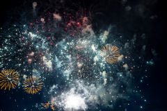 Colorful fireworks on the black sky background Royalty Free Stock Image