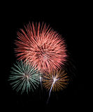 Colorful fireworks in the black sky Stock Photos