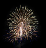 Colorful fireworks in the black sky Royalty Free Stock Images