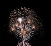 Colorful fireworks in the black sky Royalty Free Stock Photo