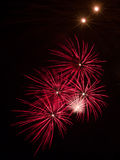 Colorful Fireworks Blossoms Royalty Free Stock Photos