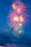 Colorful fireworks on the blue cloudy sky Stock Images