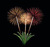 Colorful fireworks Bouquet Royalty Free Stock Images