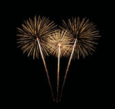 Colorful fireworks Bouquet Stock Images