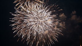 Colorful Fireworks stock video