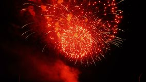 Beautiful colorful firework. Celebration stock footage
