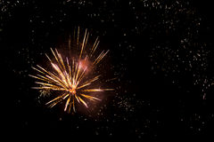 Colorful fireworks. On dark background Stock Image