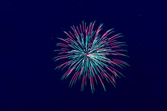 Colorful fireworks on the dark sky background Royalty Free Stock Photos