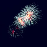Colorful fireworks on the dark sky background Stock Photo