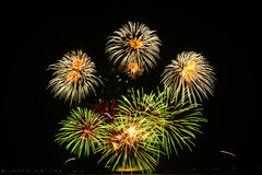 Colorful fireworks display. Fireworks display at the 5th Philippine International Pyromusical Competition in Pasay City, Philippines Stock Photography