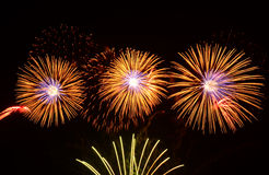 Colorful fireworks display royalty free stock images