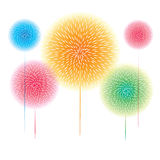 Colorful Fireworks. Display on white background,   illustration Royalty Free Stock Image