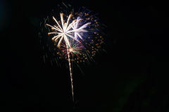 Colorful fireworks. Japanese beautiful and colourful fireworks Royalty Free Stock Photo