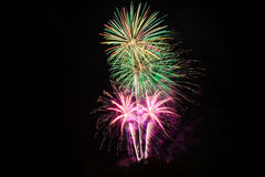 Colorful fireworks. Japanese beautiful and colourful fireworks Stock Image