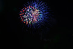 Colorful fireworks. Japanese beautiful and colourful fireworks Stock Photography