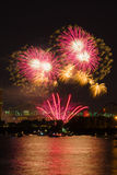 Colorful fireworks light up the night sky. A fireworks display that wows the audience Royalty Free Stock Photo