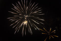 Colorful fireworks. Fireworks light up the sky - exploding firework Stock Photo