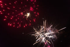 Colorful fireworks. Fireworks light up the sky - exploding firework Royalty Free Stock Image