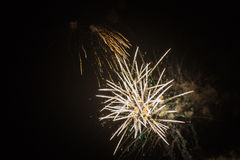 Colorful fireworks. Fireworks light up the sky - exploding firework Stock Photography