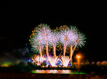 Colorful fireworks with multiple bursts  against dark sky Royalty Free Stock Photos