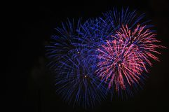 Colorful Fireworks in Night Sky Royalty Free Stock Photography
