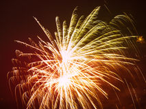 Colorful fireworks in the night sky. Happy new year celebration abstrackt background Royalty Free Stock Photo