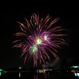 Colorful fireworks in the night sky Royalty Free Stock Photography