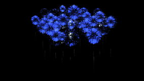 Colorful fireworks at night. Spectacular firecrakers 3d render. Blue version 9 stock video