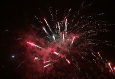 Colorful fireworks over black sky Royalty Free Stock Photo