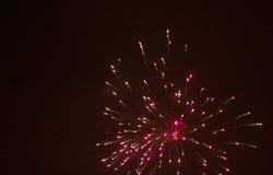 Colorful fireworks over black sky Stock Photo