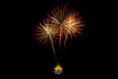 Colorful fireworks over dark sky Royalty Free Stock Photo