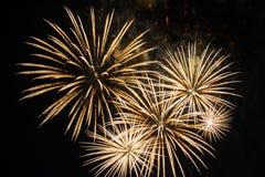 Colorful fireworks over dark sky Stock Image