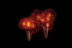Colorful fireworks over dark sky, displayed during a celebration event. New Year colorful celebration fireworks Royalty Free Stock Image