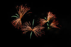 Colorful fireworks over night sky. The colorful fireworks over night sky Royalty Free Stock Images