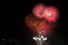 Colorful fireworks over night sky,red fireworks lines Royalty Free Stock Photography