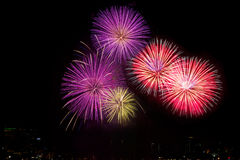 Colorful fireworks over night sky,red fireworks lines Royalty Free Stock Image