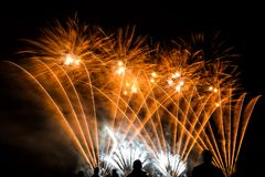 Colorful fireworks over night sky Royalty Free Stock Photo