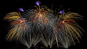 Colorful fireworks over night sky. Colorful fireworks of various colors over night sky with spectators Royalty Free Stock Image