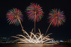 Colorful fireworks in Seoul ,South Korea Stock Photography
