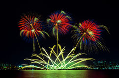 Colorful fireworks in Seoul ,South Korea. Stock Images
