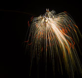 Colorful Fireworks Single. Colorful Fireworks over night sky Royalty Free Stock Photography
