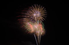 Colorful fireworks on sky Royalty Free Stock Photography