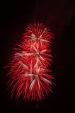 Colorful fireworks on sky Royalty Free Stock Photo