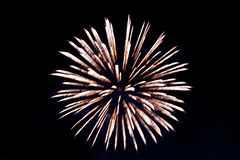 A colorful fireworks. Royalty Free Stock Photography