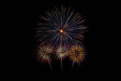 Colorful fireworks of various colors Royalty Free Stock Photos