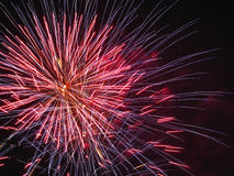 Colorful fireworks of various colors light up the night sky Royalty Free Stock Photo