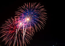 Colorful fireworks of various colors over night Royalty Free Stock Photography